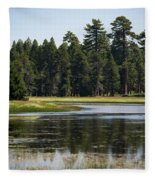 Bluff Lake Ca 6 Fleece Blanket