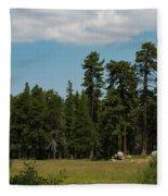 Bluff Lake Ca 7 Fleece Blanket