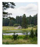 Bluff Lake Ca 9 Fleece Blanket