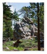 Bluff Lake Ca Boulders 1 Fleece Blanket