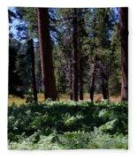 Bluff Lake Ca Fern Forest 4 Fleece Blanket