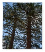 Bluff Lake Ca Through The Trees 3 Fleece Blanket