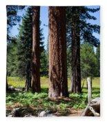 Bluff Lake Forest 3 Fleece Blanket