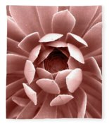 Blush Pink Succulent Plant, Cactus Close Up Fleece Blanket