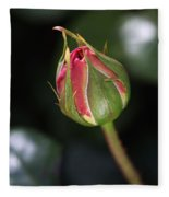 Blushing Rose Bud Fleece Blanket