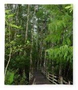Boardwalk Through The Bald Cypress Strand Fleece Blanket