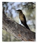 Boat - Tailed Grackle  Fleece Blanket