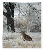 Bobcat And Heavy Frost Fleece Blanket