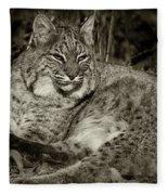 Bobcat In Black And White Fleece Blanket