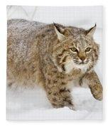 Bobcat In Snow Fleece Blanket