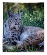 Bobcat In The Grass Fleece Blanket