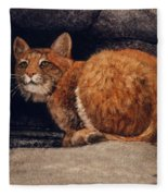 Bobcat On Ledge Fleece Blanket