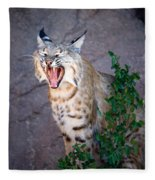 Bobcat Yawn Fleece Blanket