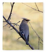 Bohemian Cedar Waxwing In Spring Fleece Blanket