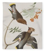 Bohemian Chatterer Fleece Blanket