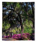 Bonaventure Cemetery IIi Fleece Blanket