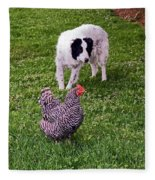 Border Collie Herding Chicken Fleece Blanket