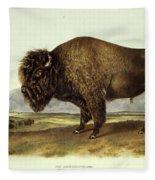 Bos Americanus, American Bison Fleece Blanket