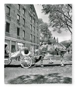 Boston Buggy Fleece Blanket