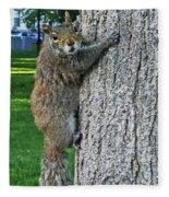 Boston Common Squirrel Hanging From A Tree Boston Ma Fleece Blanket