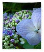 Botanical Garden Blue Hydrangea Flowers Baslee Troutman Fleece Blanket