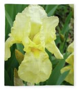 Botanical Yellow Iris Flower Summer Floral Art Baslee Troutman Fleece Blanket