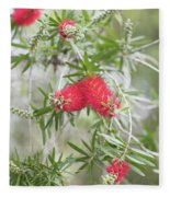 Bottlebrush Fleece Blanket