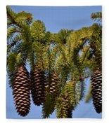 Boughs Of Pine Cones Fleece Blanket