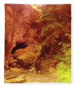 Boulder Cave  Fleece Blanket