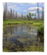 Boundary Waters Beauty Fleece Blanket