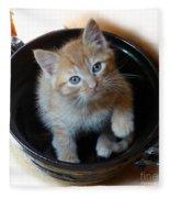 Bowlful Of Kitten Fleece Blanket