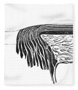 Bowmans Membrane, Retinal Layers, 1842 Fleece Blanket