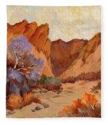 Box Canyon Fleece Blanket