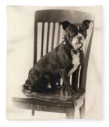 Boxer Sitting On A Chair Fleece Blanket