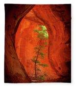 Boynton Canyon 04-343 Fleece Blanket