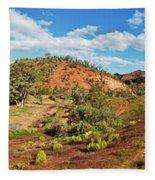 Bracchina Gorge Flinders Ranges South Australia Fleece Blanket