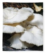 Bracket Fungus Fleece Blanket