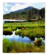 Brainard Lake Rocky Mountain National Park Fleece Blanket