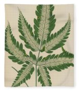 Brake Fern Fleece Blanket