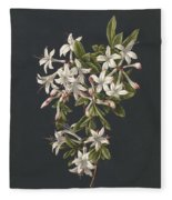 Branch Of A Flowering Azalea, M. De Gijselaar, 1831 Fleece Blanket