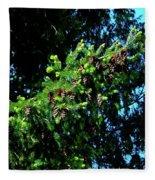Branch Of Cones Fleece Blanket