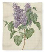 Branch With Purple Lilacs, Maria Geertruyd Barbiers-snabilie, 1786 - 1838 Fleece Blanket