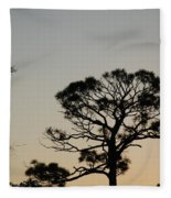 Branches In The Sunset Fleece Blanket