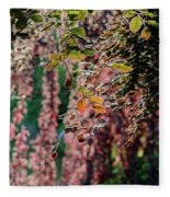Branches Of A Tree With Colorful Leaves Shining In The Sunlight Fleece Blanket