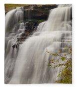 Brandywine Falls IIi Fleece Blanket