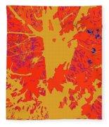 Brandywine  Maple Fall Colors 4 Fleece Blanket
