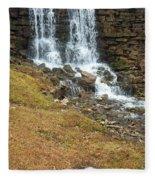 Branson Waterfall 4 Fleece Blanket