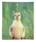 Brave New Baby - Gosling Ready To Conquer The World Fleece Blanket