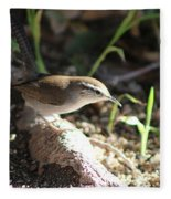 Breswick Wren On Tree Root 2 Fleece Blanket