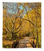 Bridge Of Sighs Fleece Blanket